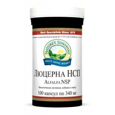 Люцерна НСП / Альфальфа / Alfalfa NSP