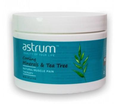Обезболивающий терапевтический Минеральный гель с маслом Чайного дерева охлаждающий / Cooling Mineral Gel Tea Tree Muscle Pain Therapy, 8 oz