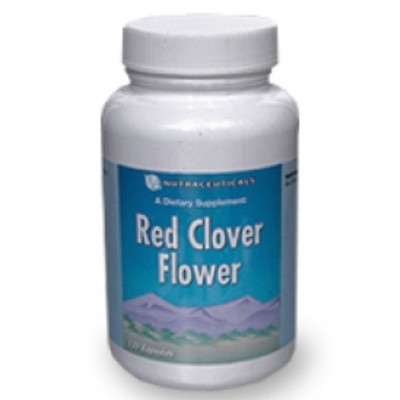 Красный клевер цветки / Red Clover Flower