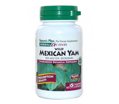 Вайлд Мексикан Ям / Wild Mexican Yam