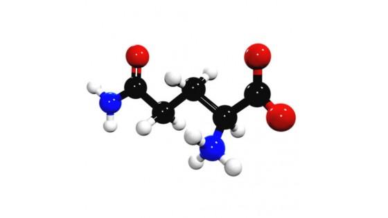 Аминокислота Глутамин